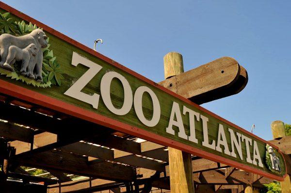 Zoo Atlanta Avio karte